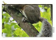 Squirrel IIi Carry-all Pouch