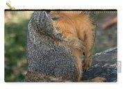 Squirrel Looking For A Hand Out Carry-all Pouch