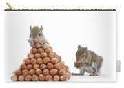 Squirrels And Nut Pyramid Carry-all Pouch