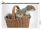 Squirrels In A Basket Carry-all Pouch by Mark Taylor