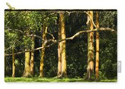 Stand Of Rainbow Eucalyptus Trees Carry-all Pouch