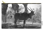 Standing Tall In Black And White Carry-all Pouch