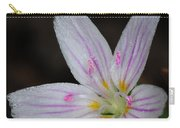 Star Of Bethlehem Carry-all Pouch by Paul Ward