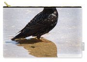 Starling Paddling Carry-all Pouch