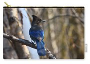 Stellar Jay Carry-all Pouch