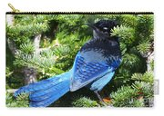 Stellers Jay 2 Carry-all Pouch