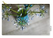 Still Life 04 Carry-all Pouch by Nailia Schwarz
