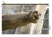 Stone Lion Carry-all Pouch