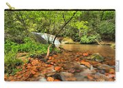 Stone Mountain Lower Falls Carry-all Pouch