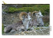 Stone Mountain Sheep, Stone Mountain Carry-all Pouch