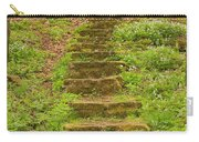 Stone Step Trail 1 Carry-all Pouch