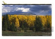 Storm Over Sleeping Indian-grand Tetons Carry-all Pouch