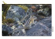 Straight Tailed Chipmunk On A Rock Carry-all Pouch