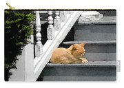 Stratford Cat Nap Carry-all Pouch