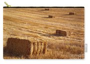 Straw Field Carry-all Pouch by Carlos Caetano