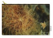 Striated Frogfish, North Sulawesi Carry-all Pouch
