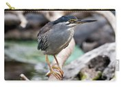 Striated Heron Carry-all Pouch by Fabrizio Troiani