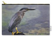 Striated Heron Carry-all Pouch