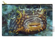 Striped Burrfish On Caribbean Reef Carry-all Pouch