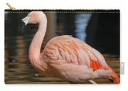 Strolling Flamingo Carry-all Pouch
