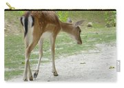 Strolling Through The Park Carry-all Pouch