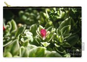 Succulent's Ruby Carry-all Pouch