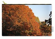 Sugar Maple Carry-all Pouch