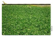 Sugarbeet Field Carry-all Pouch