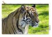 Sumatran Tiger Portrait  Carry-all Pouch