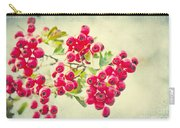 Summer Berries Carry-all Pouch