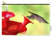 Summer Fun Hummingbird Carry-all Pouch