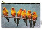 Sun Conures Carry-all Pouch