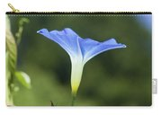 Sun On Morning Glory Carry-all Pouch