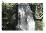 Sun On The Bushkill Falls  Carry-all Pouch