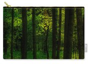 Sunlight In Forest Carry-all Pouch