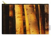 Sunlight On Aspen Trees, Twin Falls Carry-all Pouch