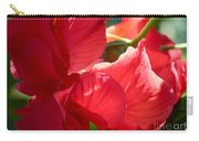 Sunlight On Red Hibiscus Carry-all Pouch by Carol Groenen