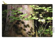 Sunlight Reaching The Forest Floor Carry-all Pouch