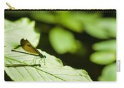 Sunlit Dragonfly Carry-all Pouch
