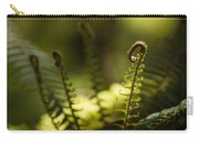 Sunlit Fiddleheads Carry-all Pouch