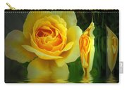 Sunny Delight And Vase 2 Carry-all Pouch