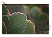 Sunset Succulents Carry-all Pouch
