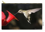 Sunshine On Hummingbird Carry-all Pouch