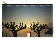 Sunshine Over A Lake Carry-all Pouch