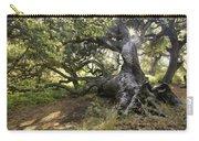 Sunstar Oak Carry-all Pouch