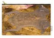 Surinam Toad Carry-all Pouch