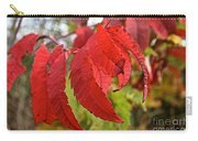 Surreal Sumac Carry-all Pouch
