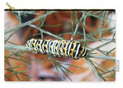 Swallowtail Caterpillar Carry-all Pouch