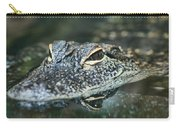 Sweet Baby Alligator Carry-all Pouch