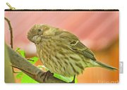 Sweet Finch Painted Effect Carry-all Pouch